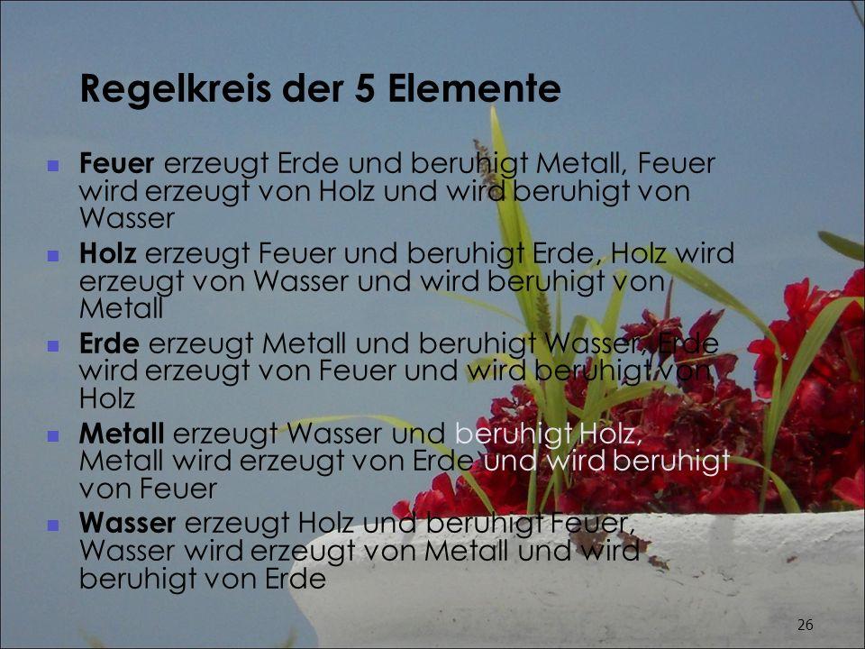 Regelkreis der 5 Elemente