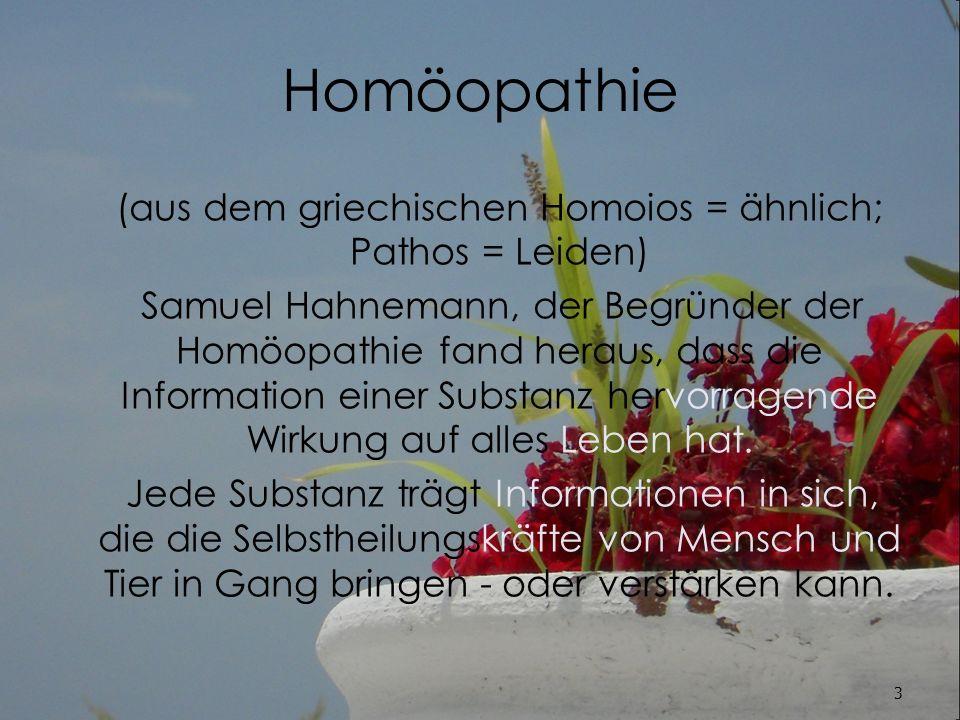 (aus dem griechischen Homoios = ähnlich; Pathos = Leiden)