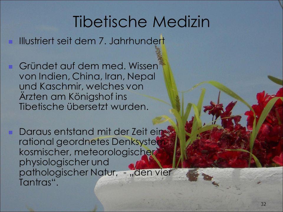 Tibetische Medizin Illustriert seit dem 7. Jahrhundert