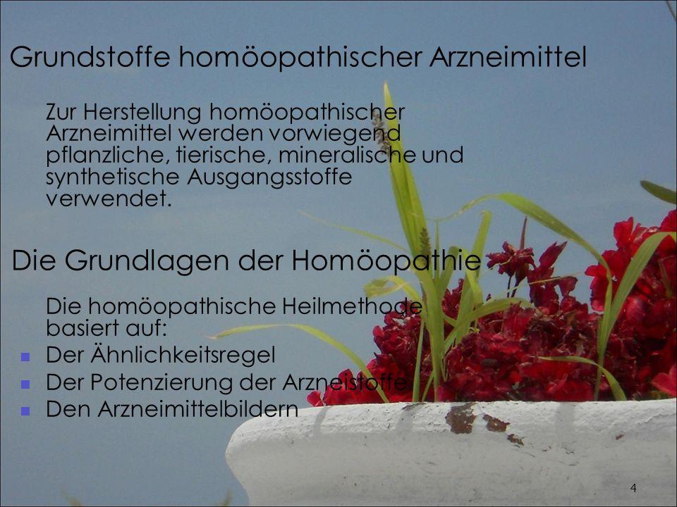 Die Grundlagen der Homöopathie