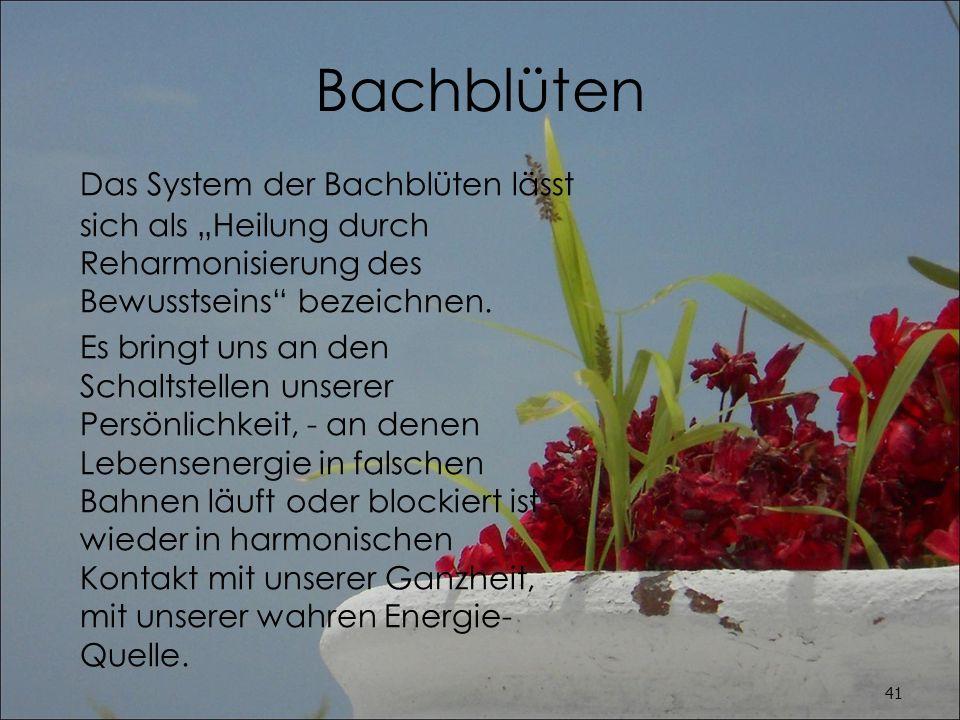 """Bachblüten Das System der Bachblüten lässt sich als """"Heilung durch Reharmonisierung des Bewusstseins bezeichnen."""