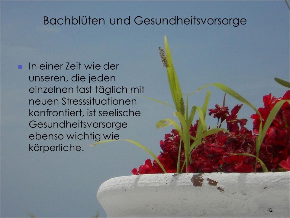 Bachblüten und Gesundheitsvorsorge