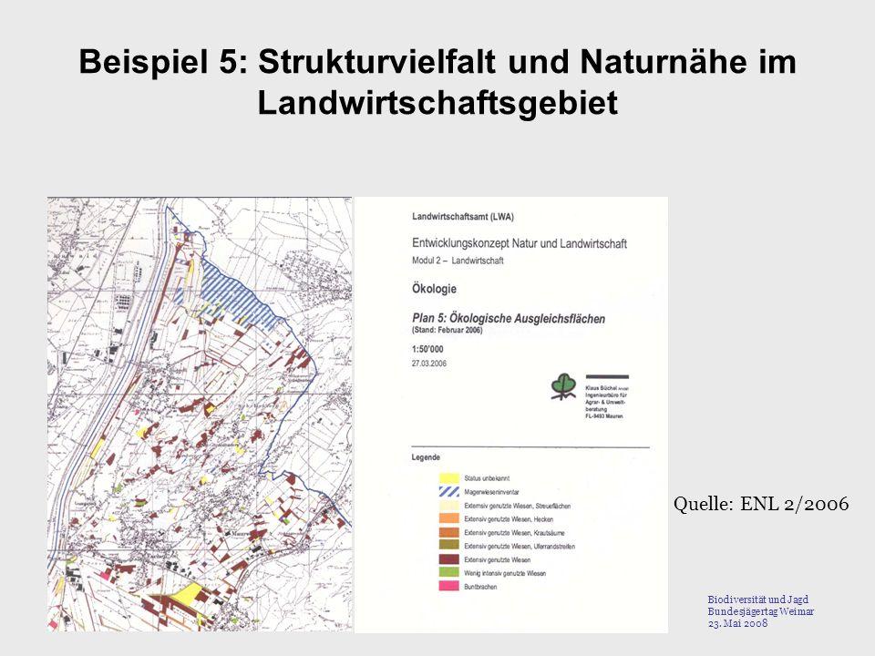Beispiel 5: Strukturvielfalt und Naturnähe im Landwirtschaftsgebiet