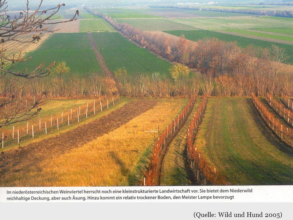 (Quelle: Wild und Hund 2005)