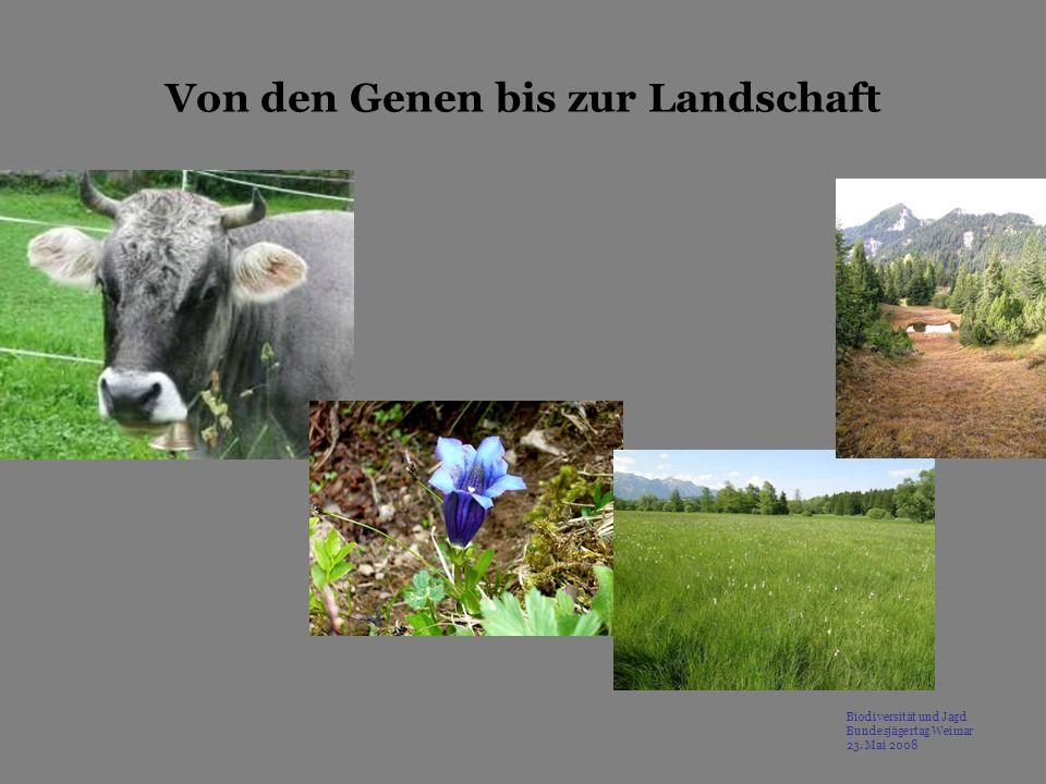 Von den Genen bis zur Landschaft