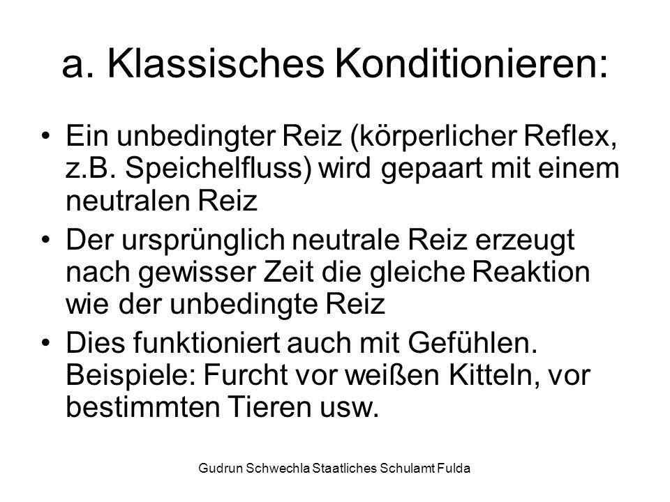 a. Klassisches Konditionieren: