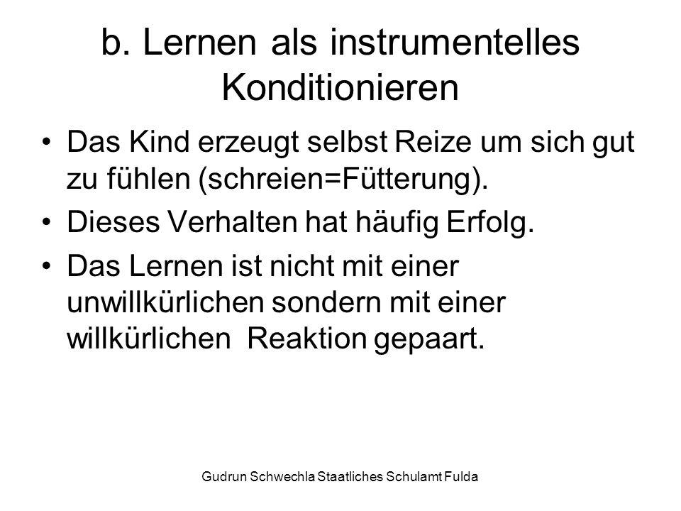 b. Lernen als instrumentelles Konditionieren