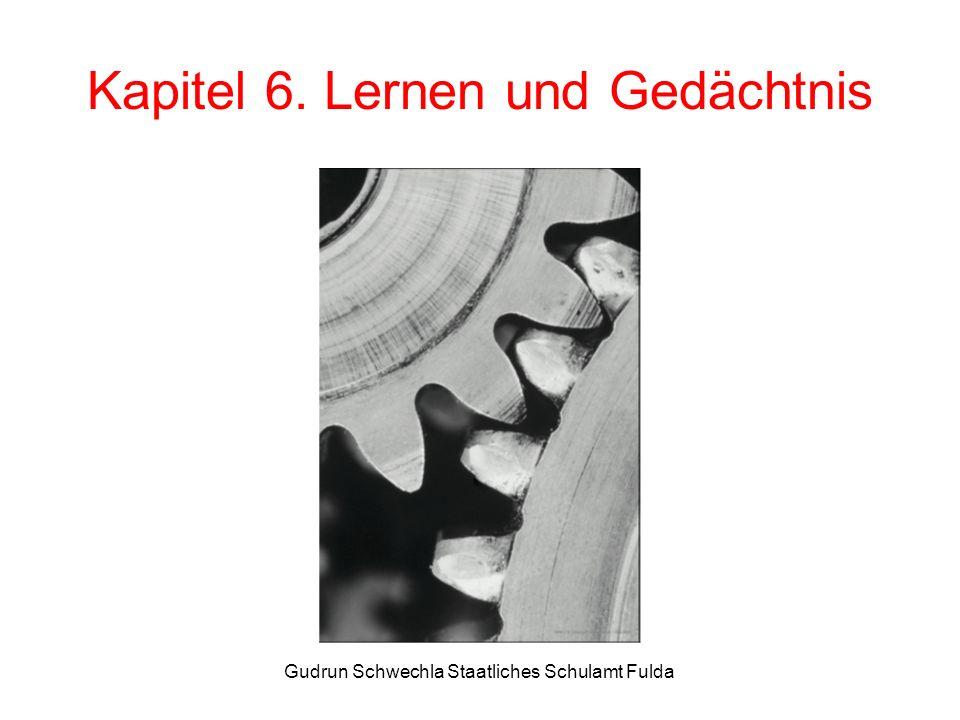 Kapitel 6. Lernen und Gedächtnis