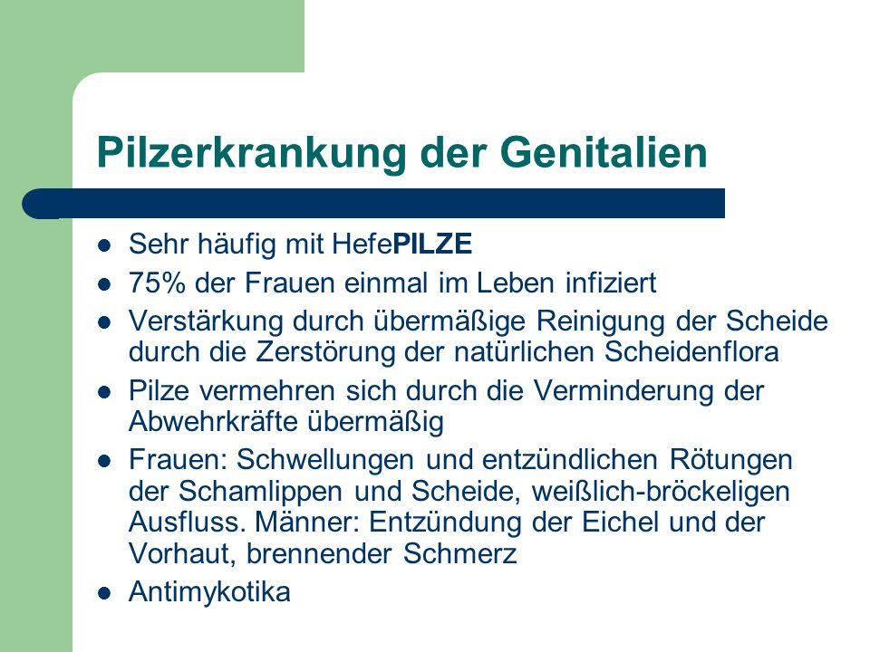 Pilzerkrankung der Genitalien