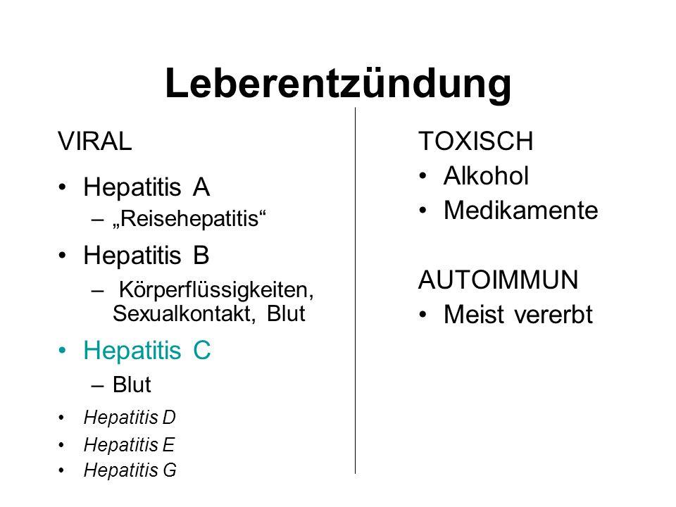 Leberentzündung VIRAL Hepatitis A Hepatitis B Hepatitis C TOXISCH