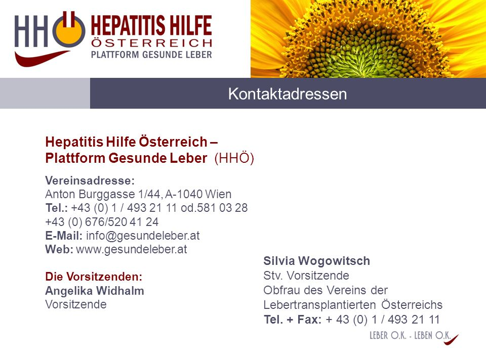 Kontaktadressen Hepatitis Hilfe Österreich – Plattform Gesunde Leber (HHÖ)