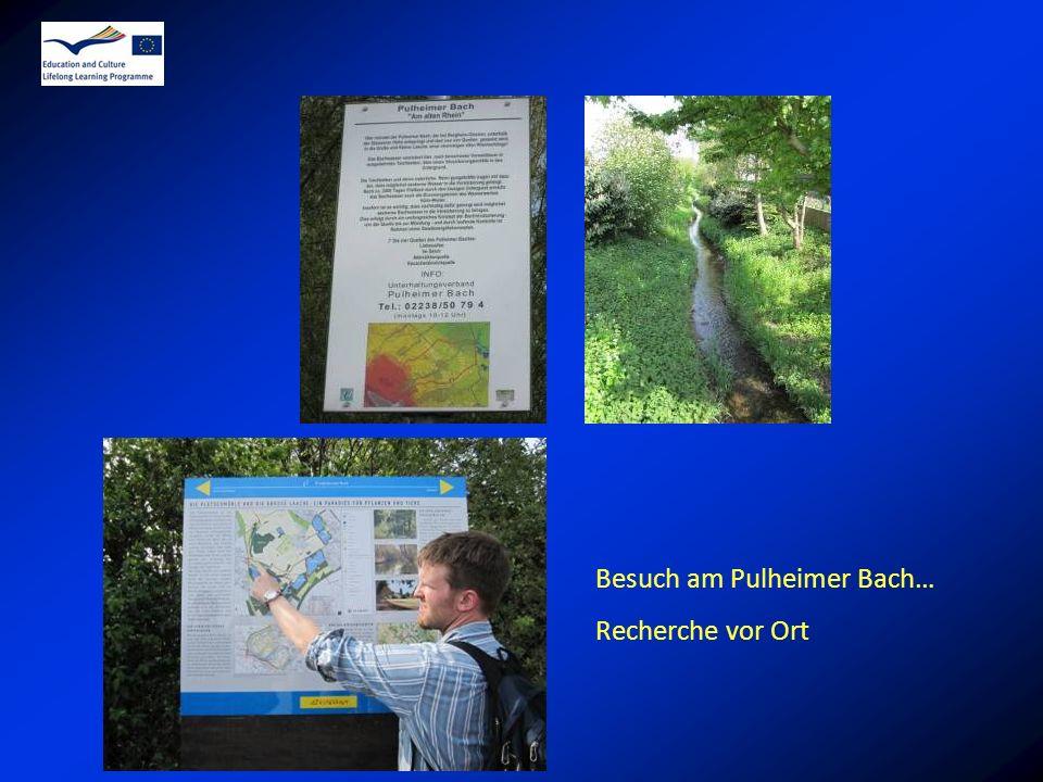 Besuch am Pulheimer Bach…