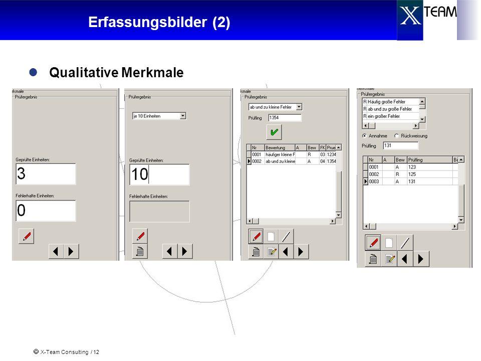 Erfassungsbilder (2) Qualitative Merkmale
