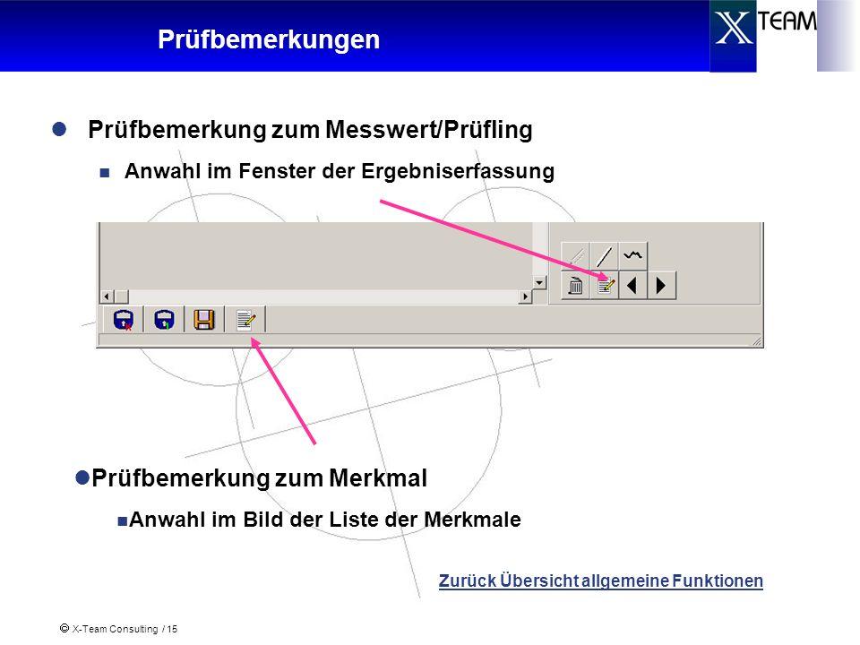Prüfbemerkungen Prüfbemerkung zum Messwert/Prüfling