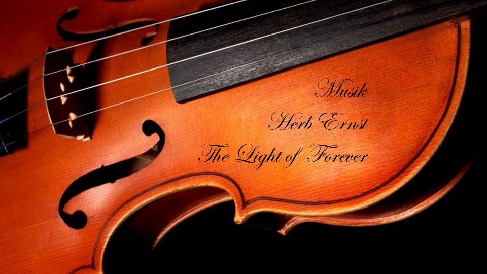 Musik Herb Ernst The Light of Forever