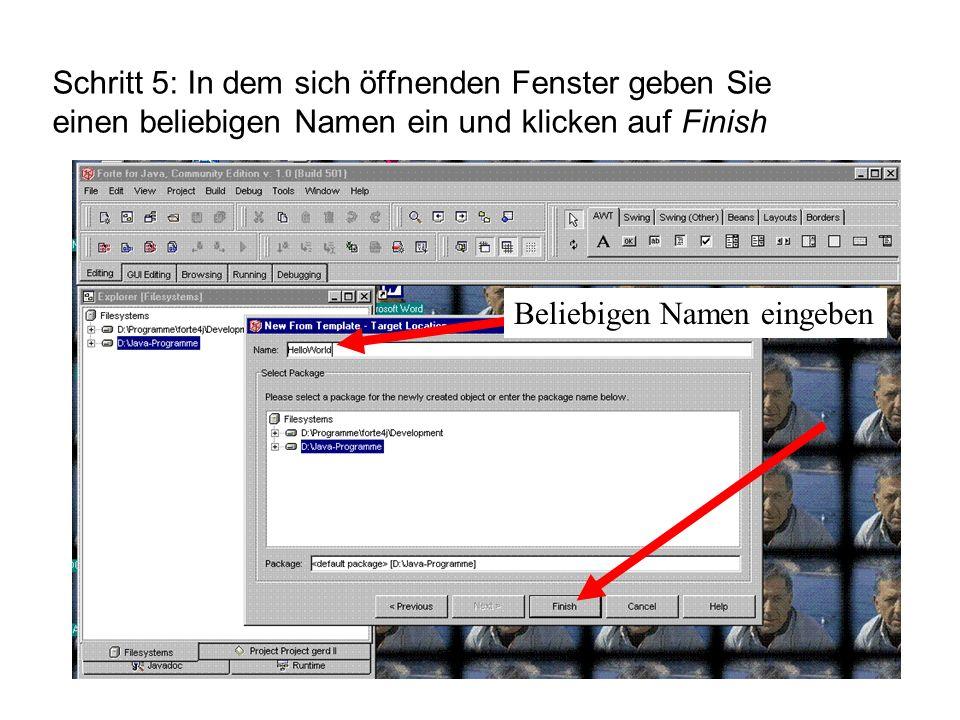 Schritt 5: In dem sich öffnenden Fenster geben Sie einen beliebigen Namen ein und klicken auf Finish