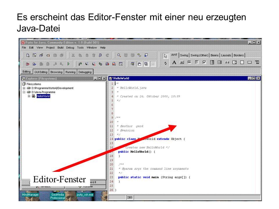 Es erscheint das Editor-Fenster mit einer neu erzeugten Java-Datei