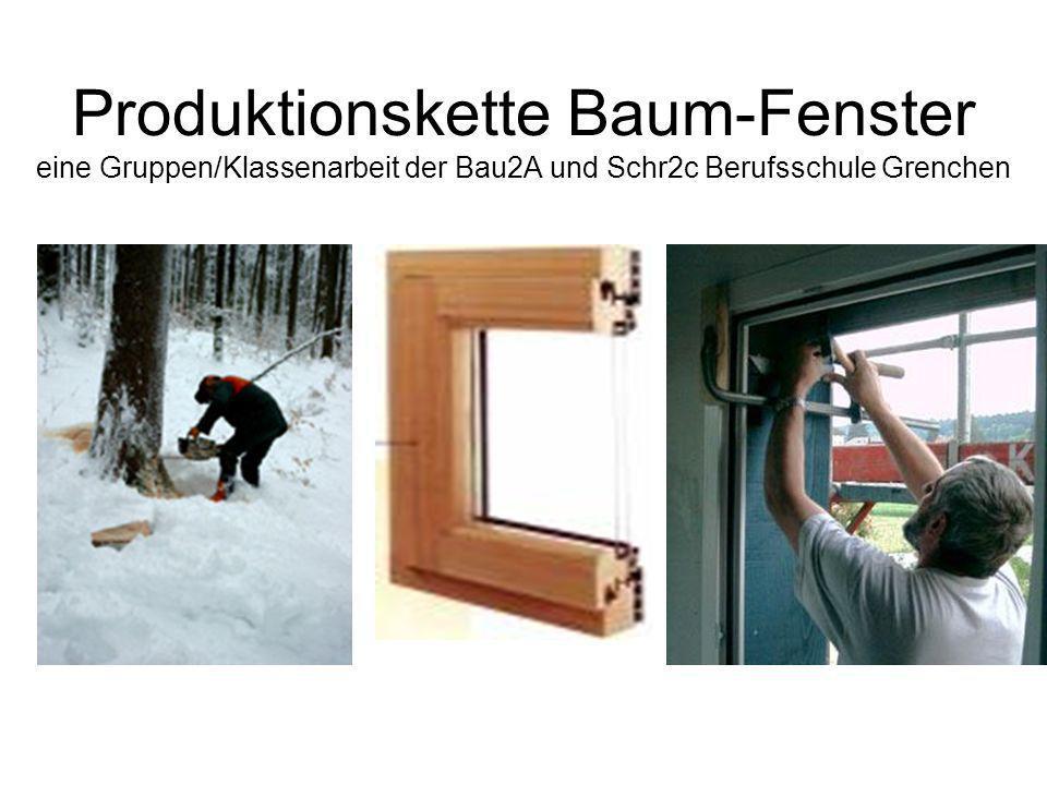Produktionskette Baum-Fenster eine Gruppen/Klassenarbeit der Bau2A und Schr2c Berufsschule Grenchen