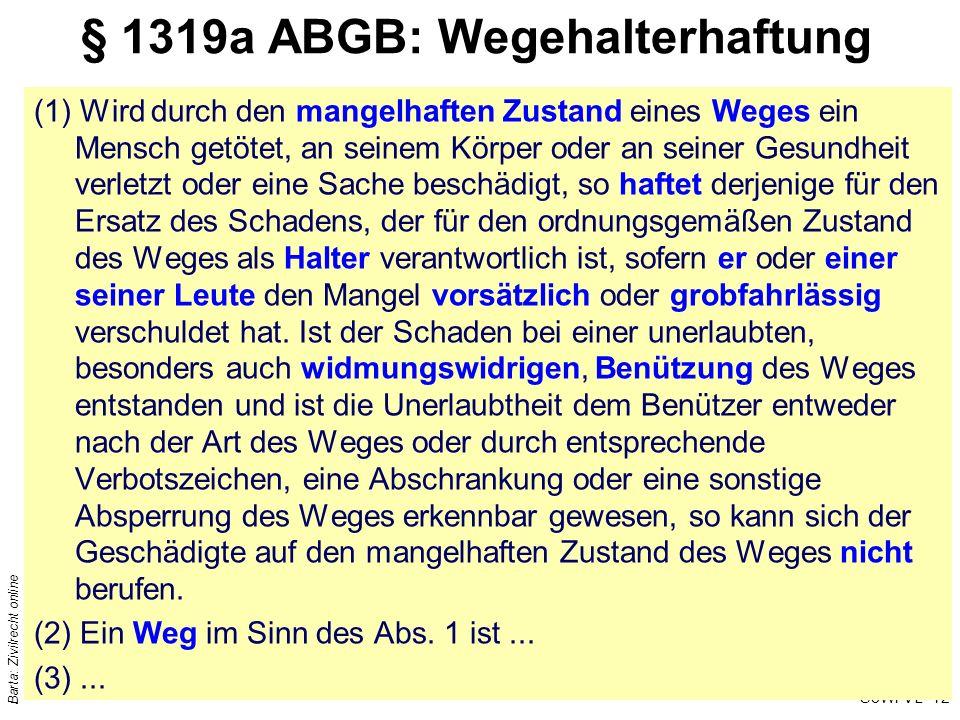 § 1319a ABGB: Wegehalterhaftung