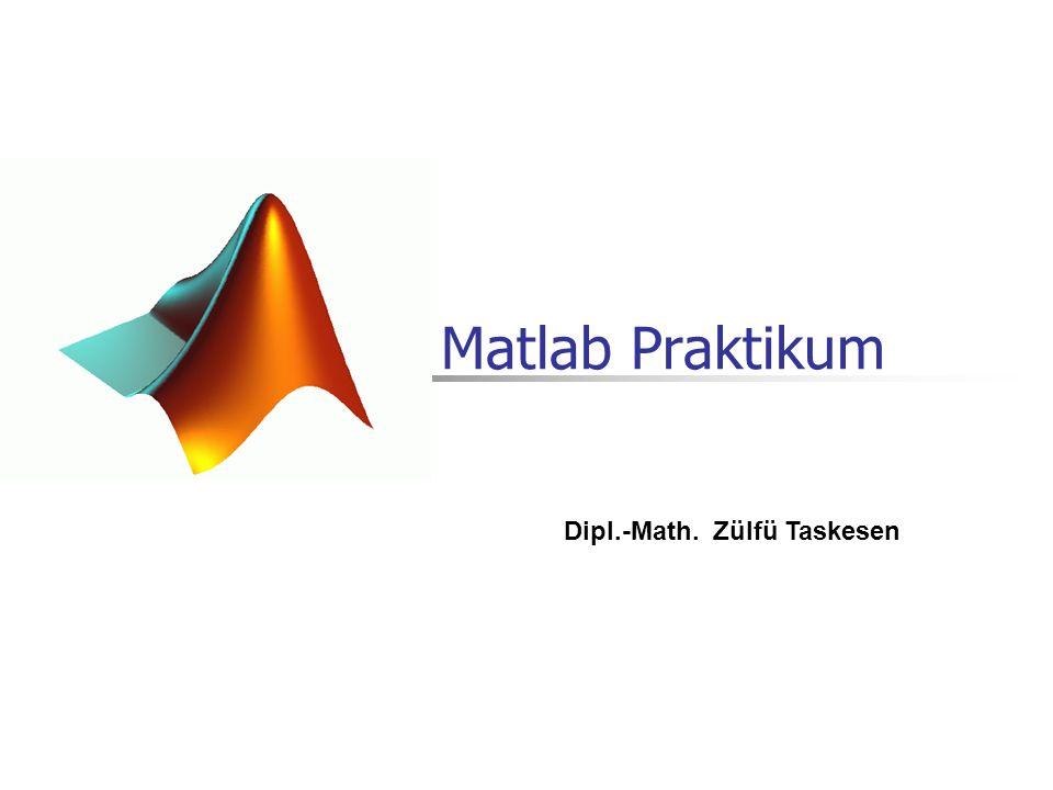 Matlab Praktikum Dipl.-Math. Zülfü Taskesen