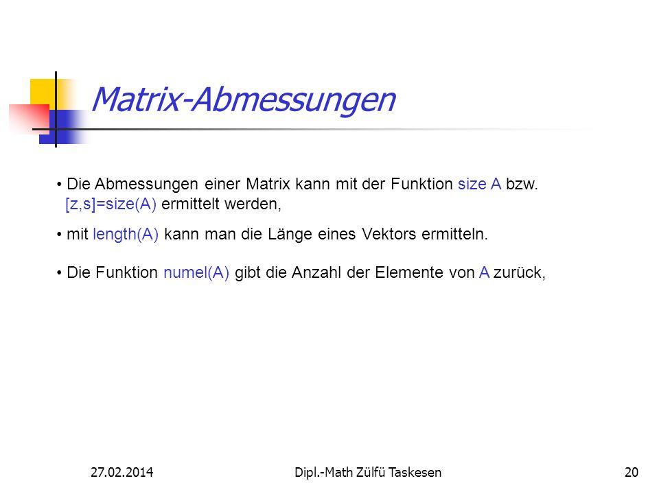 Dipl.-Math Zülfü Taskesen