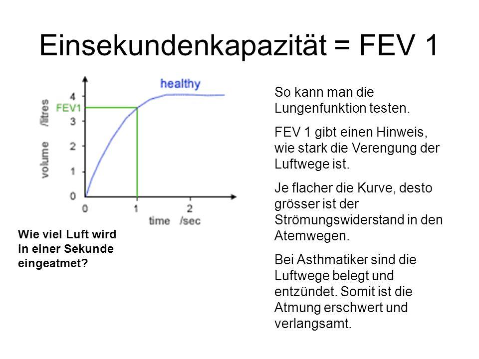 Einsekundenkapazität = FEV 1