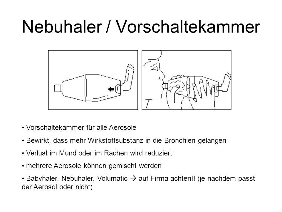 Nebuhaler / Vorschaltekammer