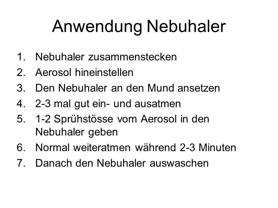 Anwendung Nebuhaler Nebuhaler zusammenstecken Aerosol hineinstellen