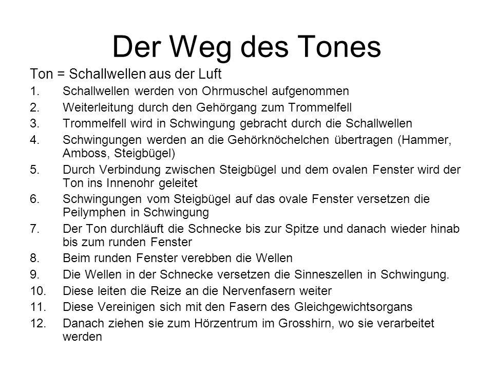 Der Weg des Tones Ton = Schallwellen aus der Luft