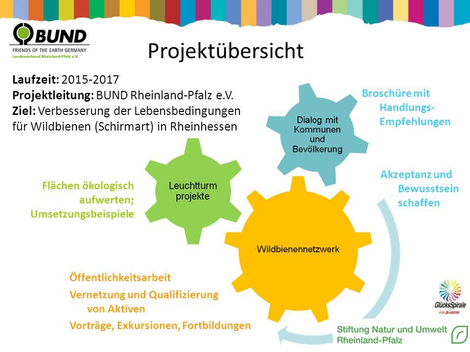 Projektübersicht Laufzeit: 2015-2017