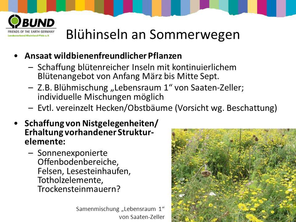 Blühinseln an Sommerwegen