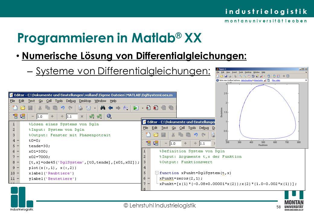 Programmieren in Matlab® XX