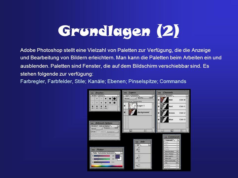 Grundlagen (2) Adobe Photoshop stellt eine Vielzahl von Paletten zur Verfügung, die die Anzeige.