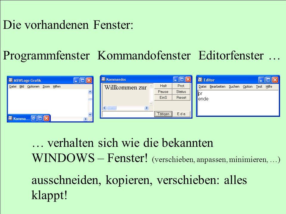 Die vorhandenen Fenster: