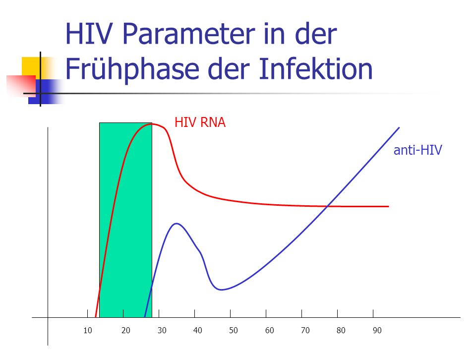 HIV Parameter in der Frühphase der Infektion