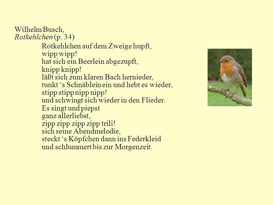 Wilhelm Busch, Rotkehlchen (p. 34) Rotkehlchen auf dem Zweige hupft, wipp wipp! hat sich ein Beerlein abgezupft,