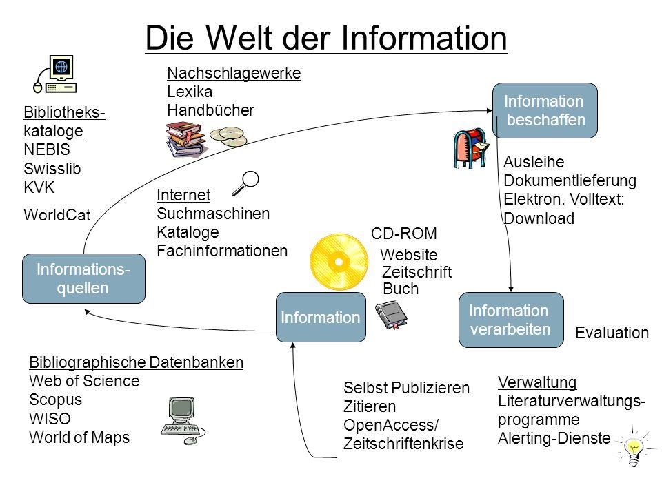 Die Welt der Information