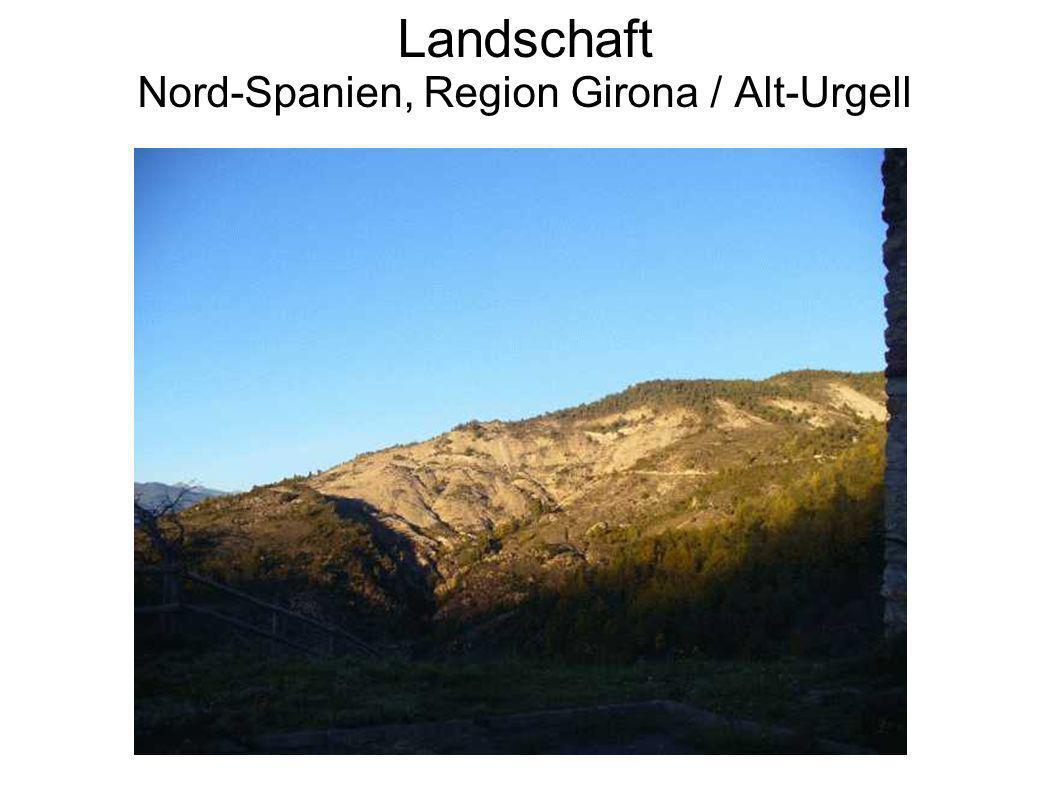 Landschaft Nord-Spanien, Region Girona / Alt-Urgell