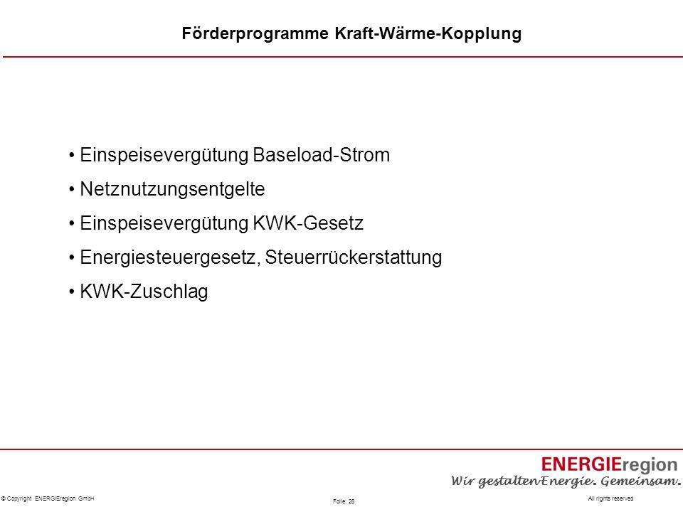 Einspeisevergütung Baseload-Strom Netznutzungsentgelte