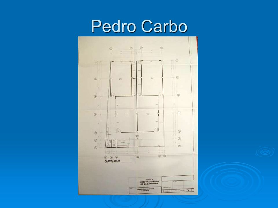 Pedro Carbo