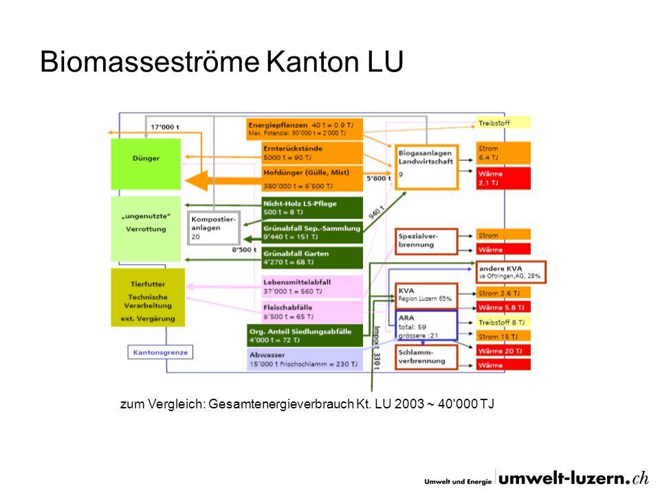 Biomasseströme Kanton LU