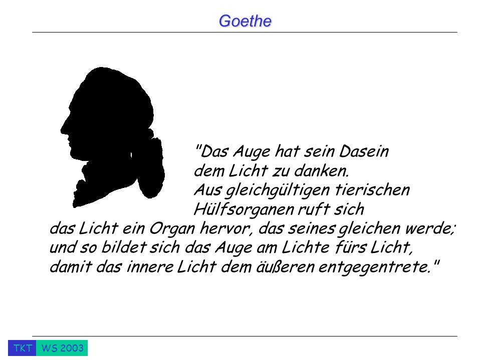Goethe Das Auge hat sein Dasein dem Licht zu danken.