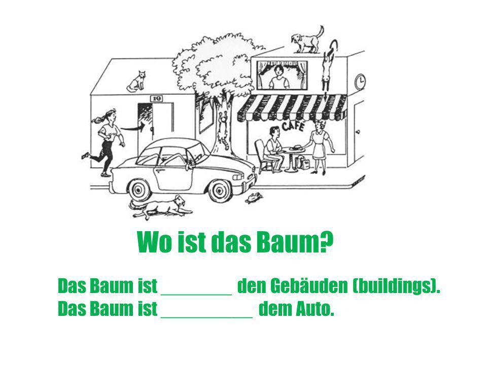 Wo ist das Baum Das Baum ist _______ den Gebäuden (buildings).
