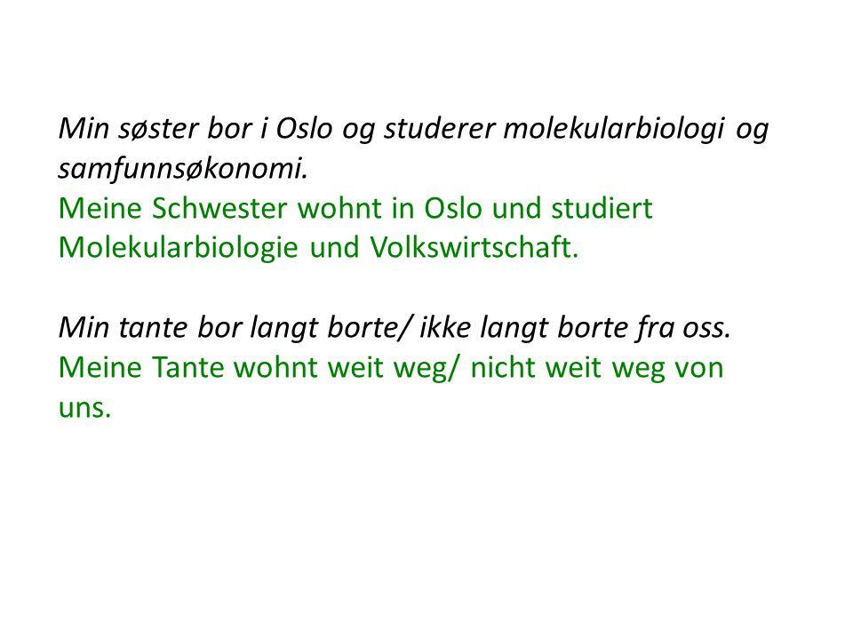 Min søster bor i Oslo og studerer molekularbiologi og samfunnsøkonomi.