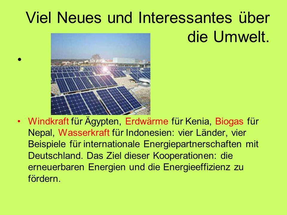 Viel Neues und Interessantes über die Umwelt.