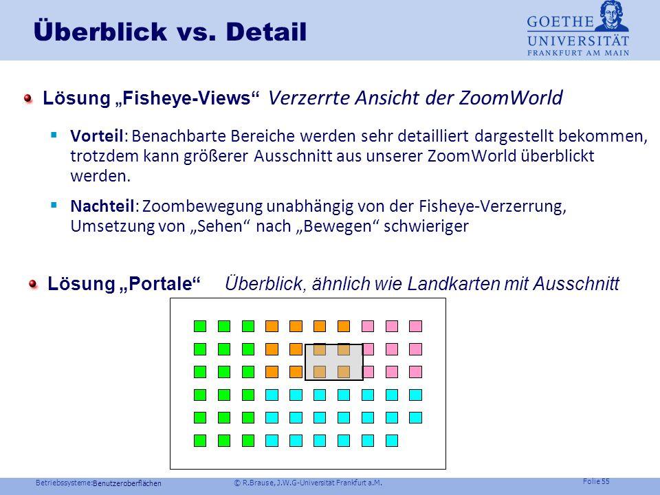 """Überblick vs. Detail Lösung """"Fisheye-Views Verzerrte Ansicht der ZoomWorld."""