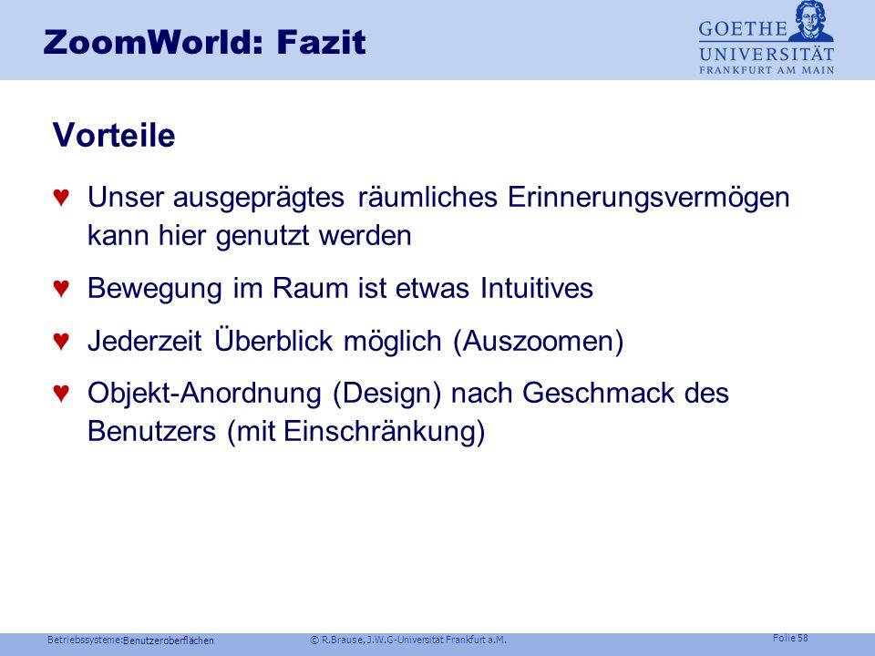 ZoomWorld: Fazit Vorteile