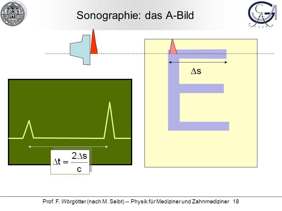 Sonographie: das A-Bild