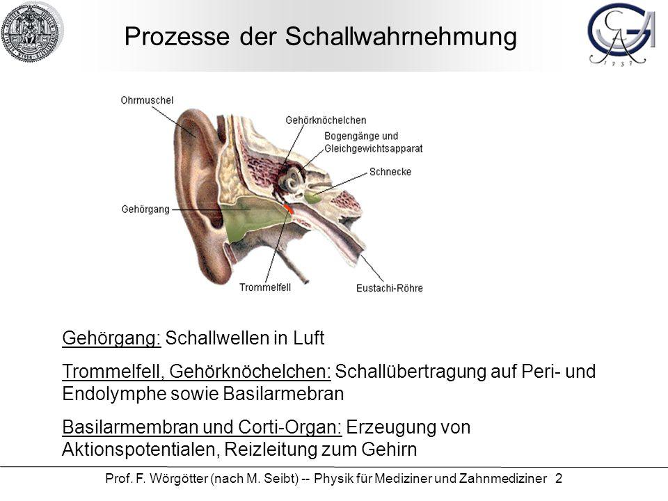 Atemberaubend Eustachischen Röhre Anatomie Fotos - Anatomie Von ...