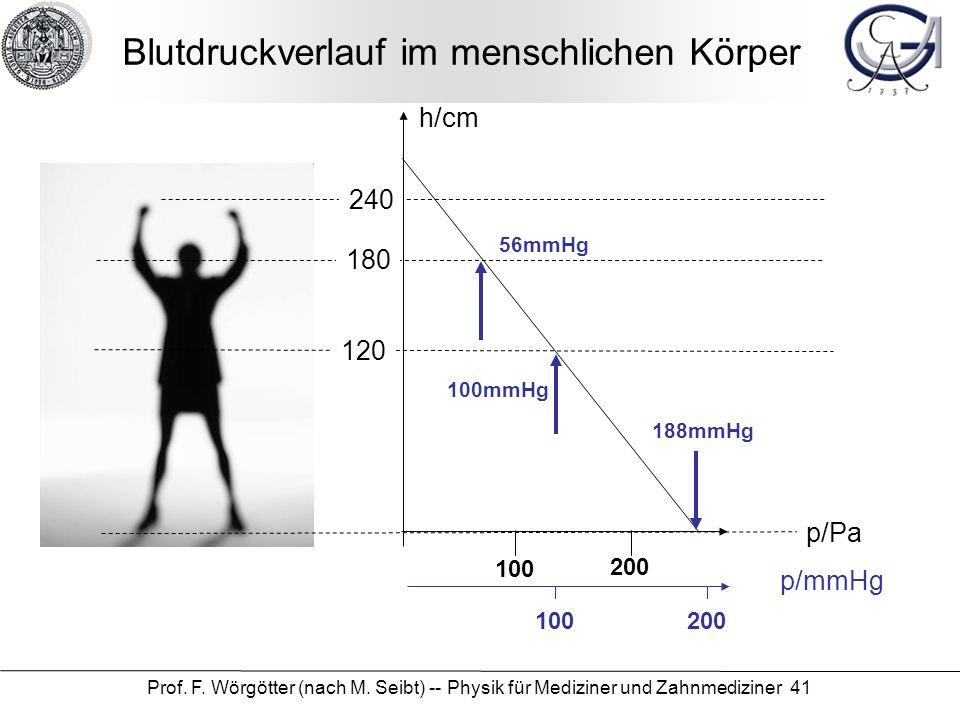 Blutdruckverlauf im menschlichen Körper